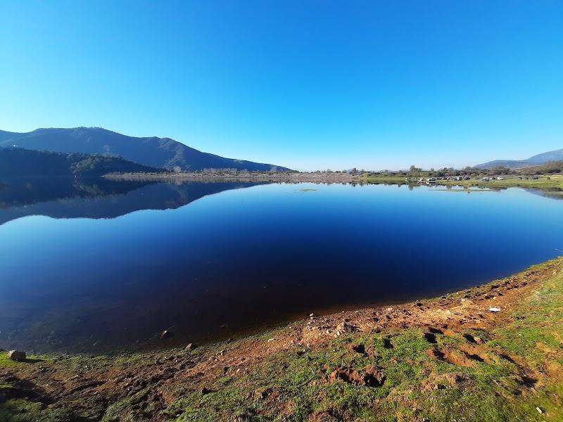 Humedal de Millahue