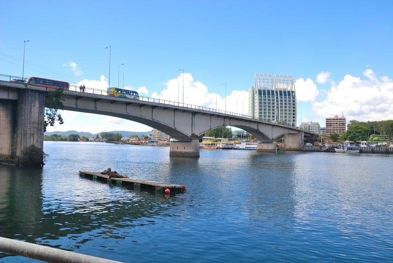 Puente Pedro de Valdivia