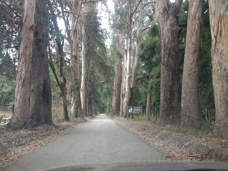 Federico Albert National Reserve