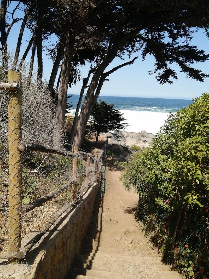 Playa Pablo Neruda