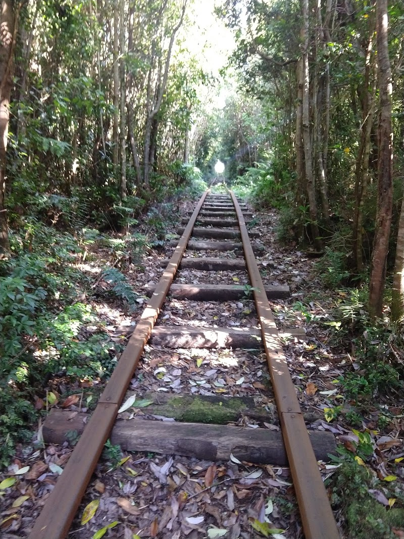 Tren de madera, Los Senderos de Chepu