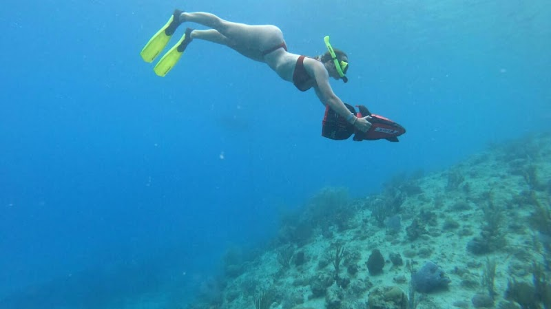 seaflower adventure